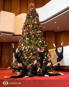 투어 첫 주는 보통 크리스마스와 겹쳐 있다. 휴스턴에서 무용수들이 크리스마스 장식 역할을 해 보였다. (Photo by projectionist Annie Li)