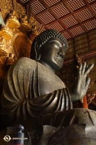 Patung Buddha di Todai-ji Temple di kota Nara. (Foto oleh Felix Sun)