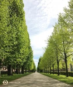 劇院旁,夾道綠樹成蔭,通往一座美麗的公園。接下來演出的歐洲城市包括德國柏林和法蘭克福。(攝影:天幕製作師Regina Dong)