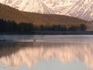 To zdjęcie zrobiła w czwartym na jej liście parku narodowym, Grand Teton w stanie Wyoming. Wschód słońca nad Oxbow Bend. (fot. Kexin Li)