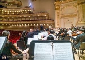 コントラバス奏者の視点から見るカーネギー・ホール。