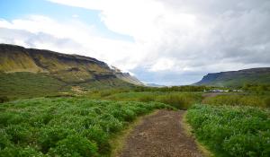 """Dalam pendakian untuk melihat air terjun tertinggi kedua di Islandia, Glymur. (Bukti fotografi bahwa Islandia bukanlah suatu tanah es.) Di persimpangan sungai ke Glymur. Di puncak salah satu dari tiga gunung berapi yang kami daki, Snæfellsjökull ... Adalah, teman stratovolcano berusia 700.000 tahun yang tidak membiarkan kita lewat. Pantai barat Islandia. Menyorot kota pelabuhan Stykkishólmur. Spot Tiffany di salah satu dari ribuan air terjun di Islandia. Air terjun Dynjandi : """"Mahkota Westfjord."""" Jepretan Dynjandi yang lebih dekat. Lebih dekat lagi, saya dan kamera pasti basah kuyup. Kerið, sebuah danau kawah di selatan Islandia. Danau menakjubkan yang kami temui selama perjalanan. Saya harus melangkah keluar dalam angin kencang (lihat riak air?) untuk mendapatkan gambar ini."""