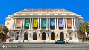 Opera House Watermark Header