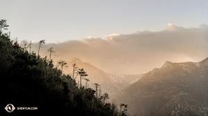 유럽 투어 중에는 국경을 너머 다른 나라로 이동하는 경우가 많았는데요. 한 번 갔다가 다시 돌아오는 경우도 있었죠. 수석 무용수 켄지 고바야시가 스위스에서 프랑스로 이동하던 중에 찍은 알프스 산의 웅장한 모습입니다. (Photo by Kenji Kobayashi)