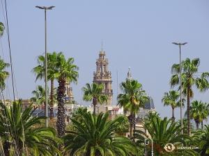 興味深いことに、この地域一帯で見られるヤシの木のほとんどは、バルセロナ原産ではないそうだ(撮影:トニー・ジャオ)