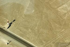 Pendant ce temps, les danseurs Alex Chun et Felix Sun se joignent à notre sud-américain Mauricio Pineda-Arce au Pérou pour parcourir les lignes de Nazca - une série de géoglyphes dans le désert de Nazca - depuis les airs.