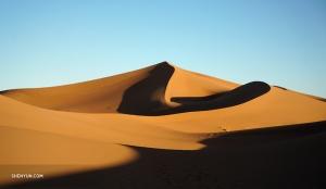 Un voyage au Maroc ne serait pas complet sans un trek dans le désert. Tiffany a effectué un voyage de trois jours dans les belles dunes vallonnées de l'Erg Chegaga...