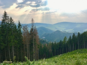 En traversant les Tatras, elle s'est arrêtée pour profiter de l'air frais et prendre ce cliché.
