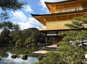 Dancer Betty Wang decides to check out the Kinkaku-ji (the Golden Pavilion).