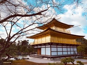 Следующая цель: танцоры Shen Yun World Company намерены запечатлеть знаменитый Золотой павильон во всей его красе. (Автор фото: Лили Ван)