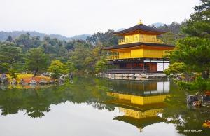 Золотой павильон над водной гладью пруда. (Автор фото: Руи Судзуки)