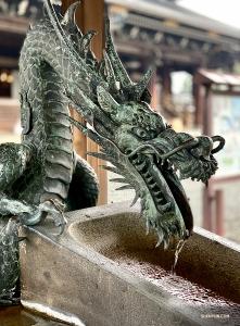 Танцовщица Лили Ван обнаружила замысловатый фонтан в виде дракона.
