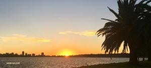 Tym czasem po drugiej stronie kuli ziemskiej Shen Yun World Company uchwyciło zachód słońca nad rzeką Swan nieopodal hotelu w Perth. (Regina Dong)
