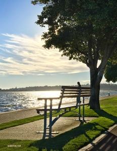 Z tak pięknym widokiem ławka wygląda na bardzo kuszące miejsce, ale my musimy zwiedzić kilka zakątków... (Regina Dong)