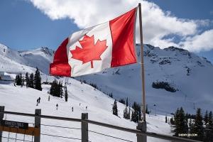 我們到達惠斯勒山頂。這些山脈位於溫哥華北部,是該地區的主要地形特徵。 (攝影:李寶圓)