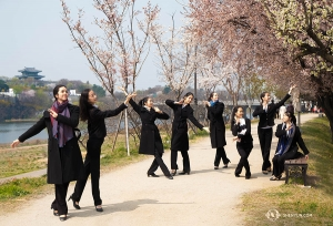 <p>올해 션윈 공연에는 그림 속 인물들이 걸어나와 살아 움직이는 작품이 있는데, 이 그림 같은 벚꽃 사진은 바로 그 작품 속 인물들의 포즈를 흉내 낸 것이라고. (Photo by Stephanie Guo)</p>