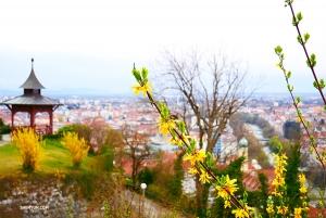 <p>언덕 위에는 잘 손질된 정원과 공원도 있다. 특히 공연이 전부 매진된 가운데 도시 전체가 우리를 반기는 느낌이다.</p>