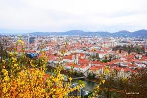 從城堡山(Schlossberg)之頂遠眺歷史悠久的老城。
