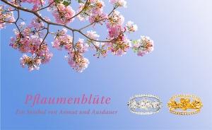 PlumBlossom Blog GER