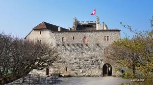 Następnie przelecieli do  Zurichu, Szwajcarii na weekend wypełniony występami, ale wcześniej odwiedzili średniowieczny zamek Habsburg (kontrabasista Juraj Kukan)