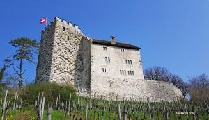 Forteca zbudowany około roku 1020 zmieniła się od tamtego czasu. Dzisiaj jest tam piękna winnica i restauracja