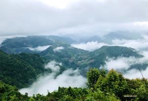 Jeff Chuang odwiedził również tajwańską farmę Qingjing, która jest położona na wysokości 1750 m n.p.m. i jest jednym z najlepszych miejsc na wakacje w trakcie gorącego lata na Tajwanie...