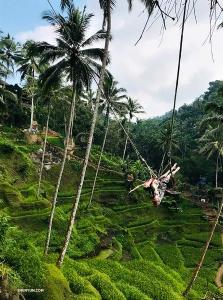 Diana Teng ekscytuje się dreszczem przygody na niesamowitej huśtawce w lesie na Bali.