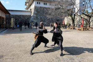 Klassieke Chinese dans en Chinese vechtsporten zijn als lang verloren broers en zussen, vraag het maar aan eerste soliste Michelle Lian en deze ninja.