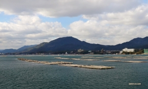 Performers pass an oyster farm during a boat ride to Miyajima Island (宮島). Time to eat!