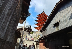 The stairs lead to the Senjokaku Pavilion and a five-tiered Pagoda (Gojunoto) that was built in 1407.  (Photo by clarinetist Yevgeniy Reznik)