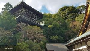 A majestic pagoda rises above the trees on Itsukushima Island.