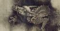 Chenrong Dragon Thumb