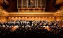 Chani Blog Symphony Thumb
